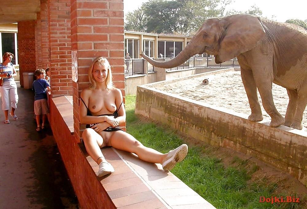 Засвет блондинки в зоопарке возле слона