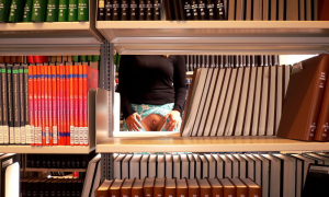 Киска в библиотеке